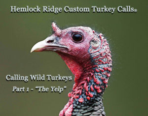 HRCC-Calling Wild Turkeys- Part1